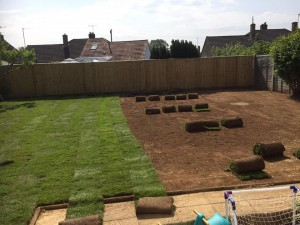 Dan Davies Landscaping  - lay the freshest turf in Wiltshire