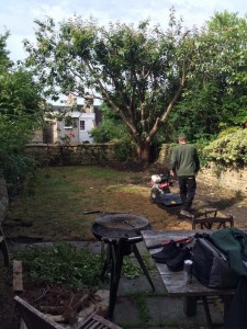 Getting rid of the old, worn lawn