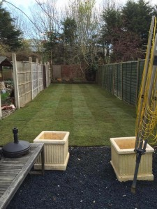 New lawn and gravel area