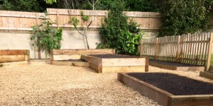 New raised beds, gravel surround and fencing